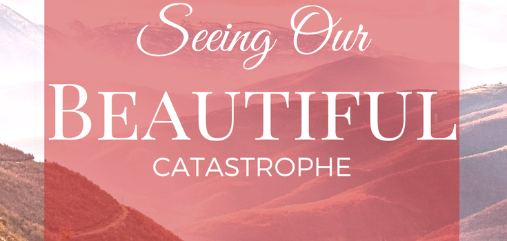 Seeing Our Beautiful Catastrophe