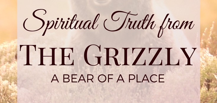 Spiritual Truth from the Grizzly – A Bear of a Place