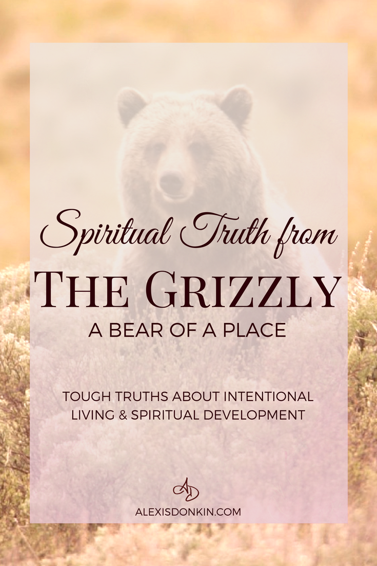 Spiritual Truth from the Grizzly - A Bear of a Place